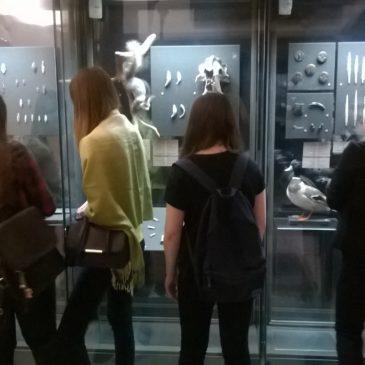 Неделя открытых дверей в музеях нашего города